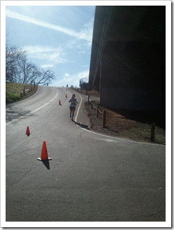 Jed Smith 50K - down the hill
