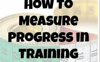 How To Measure Progress in Training