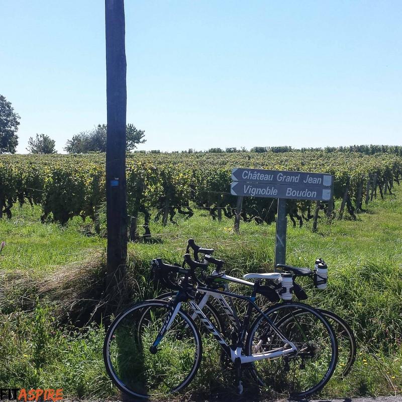 Bordeaux Vineyards // FITaspire.com