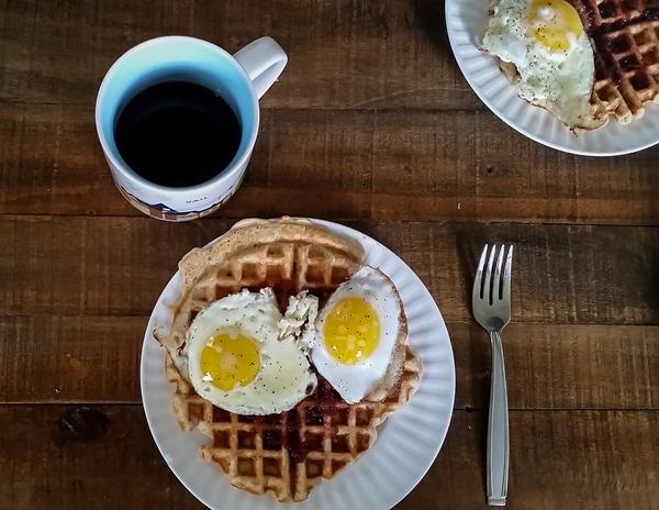 Montecristo Protein Waffle