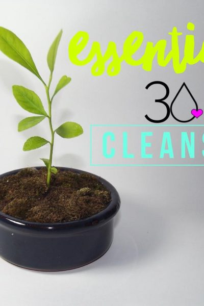 Announcing Essential 30: A Natural + Holistic Cleanse